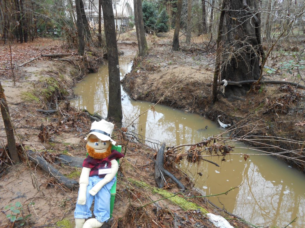 Vern Poole where stream from Lakehurst Pointe joins Tributary D