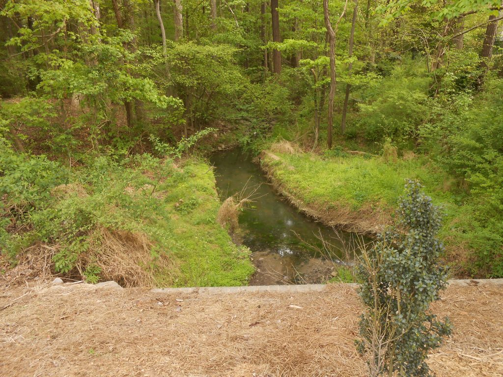 Lakehurst Pointe stream downstream of Stinhurst Drive
