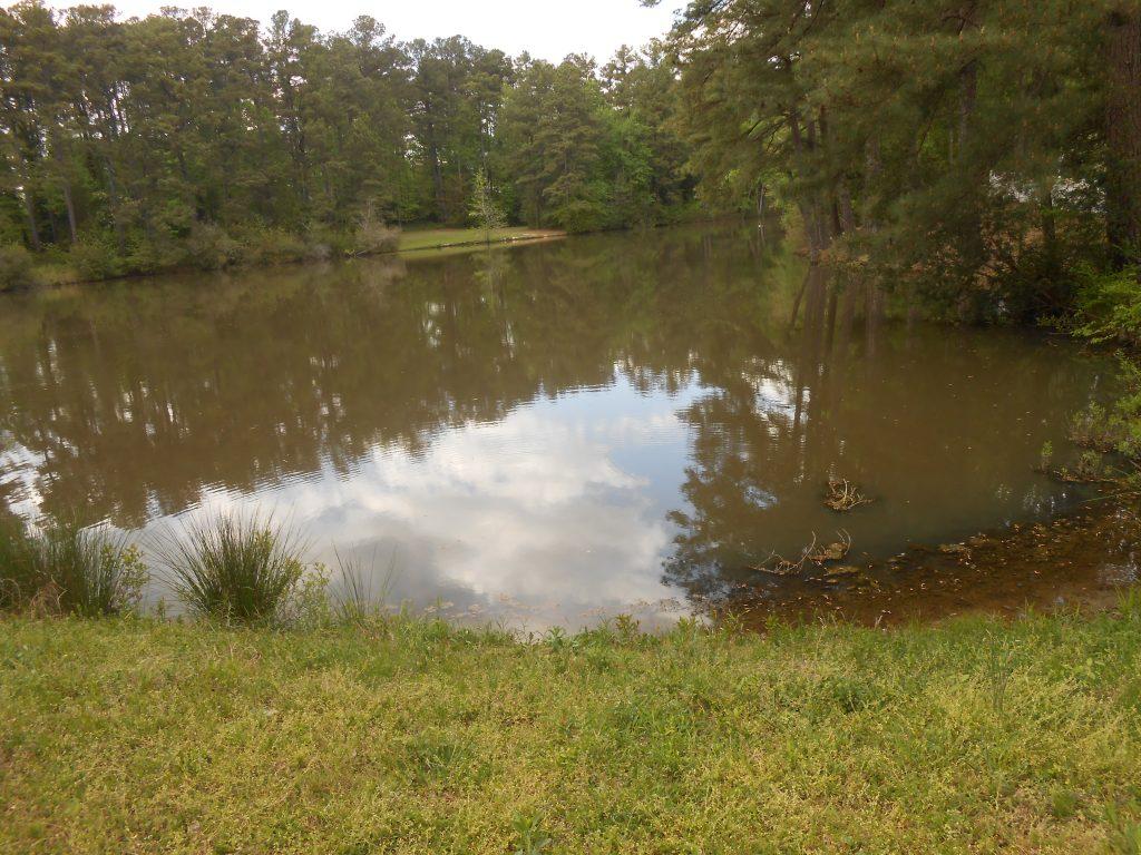 Lakehurst Pointe Pond
